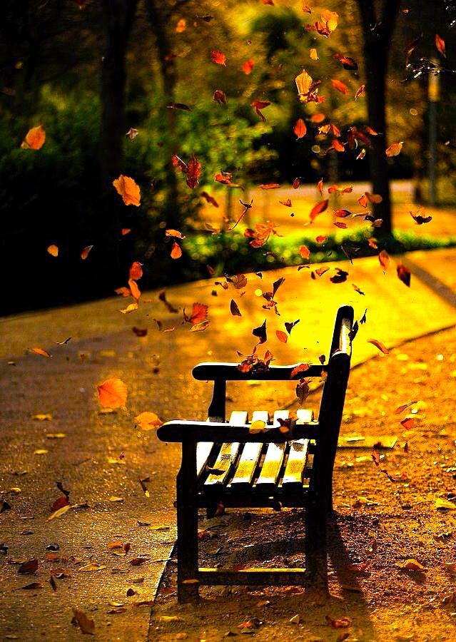 """Falling Leaf"" by Marites Avisado-Responte"