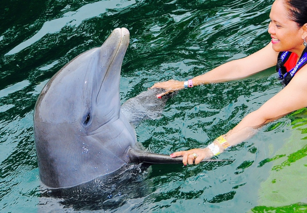 Kissed by a dolphin at the place 'Where water is born' (1/6)